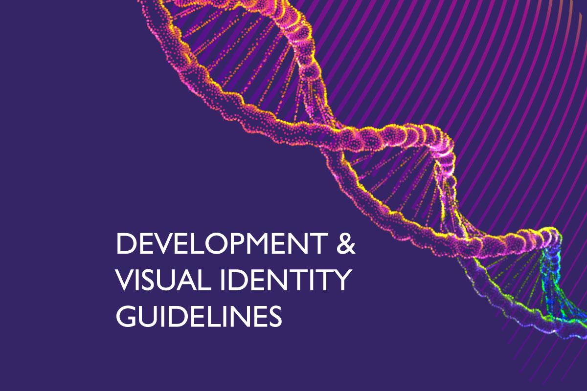 Development & Visual Identity Guidelines